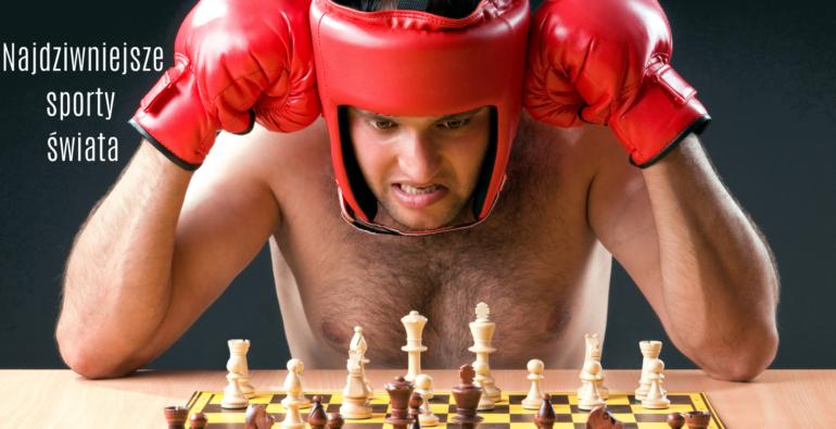 bokser grający w szachy